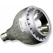 لامپ چراغ ریلی داتیس Cree