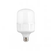 لامپ ال ای دی SMD شیله 30 وات مدل SCHP-30
