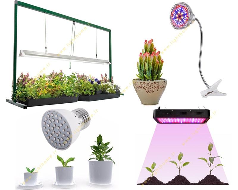 لامپ رشد گیاه چراغ رشد گیاه