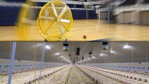 انتخاب فن مناسب آشپزخانه صنعتی، سالن مرغداری و باشگاه ورزشی